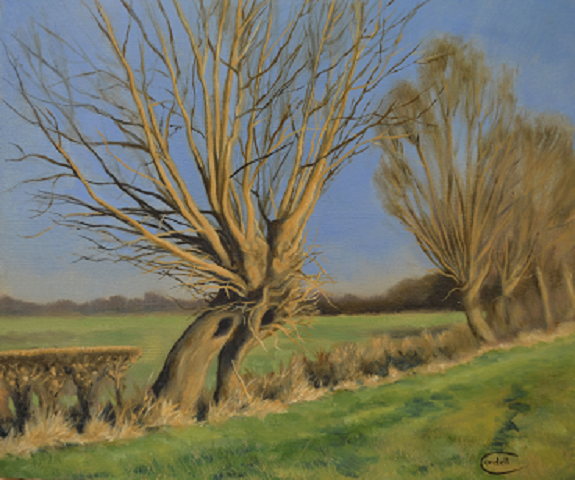 Landscape painting Crack Willow at Stoke Bruerne